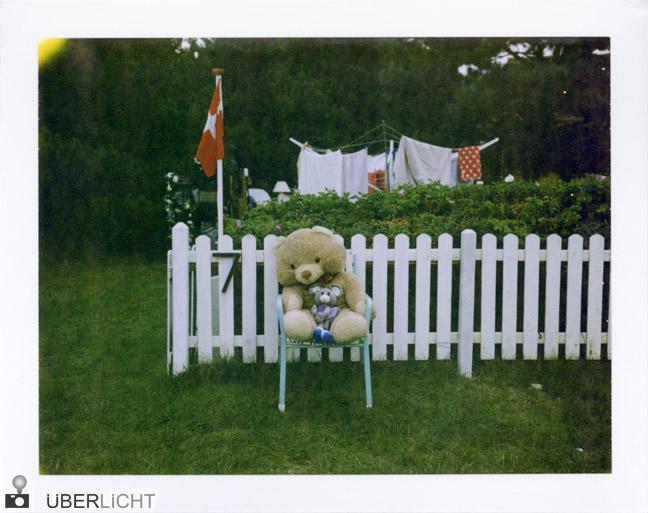 Teddybaer im Garten Polaroid 600 SE Typ 100