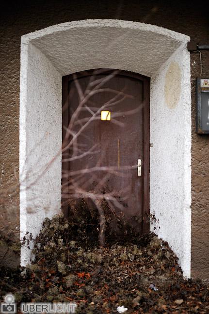 Nikon 35 1,4 Nikkor D700 Eingang Tuer zugewuchert Pflanzen