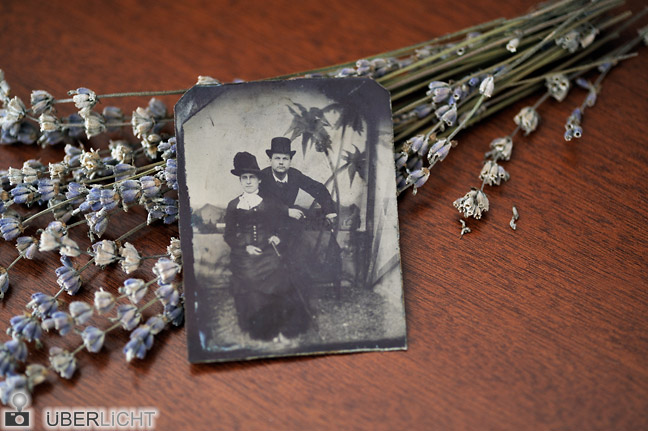 Ferrotypie auf Tisch mit Lavendel