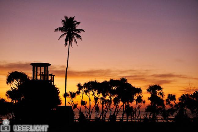 24-70 Nikon Nikkor 2,8 AF-S ED G Palmen im Sonnenuntergang auf Sri Lanka