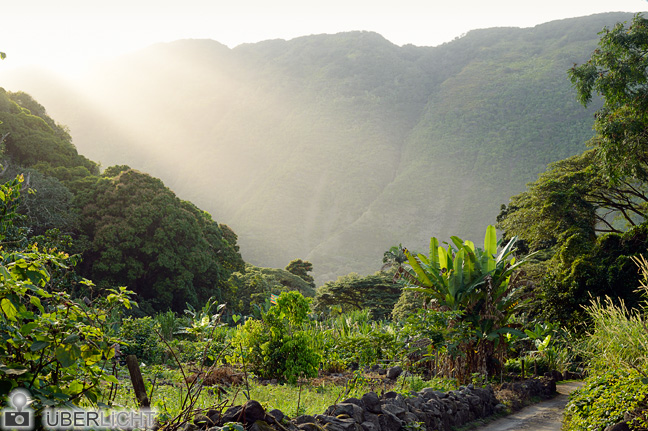 Waipio Valley mit Abendsonne